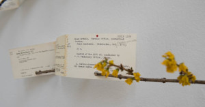 forsythia book